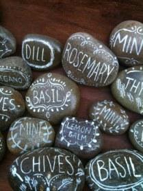 1 rock_herbs2